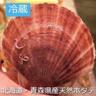 (冷蔵)北海道・青森産天然ホタテ 時期により産地が変わります。