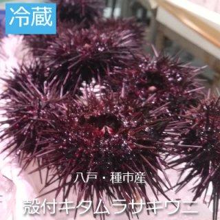 [冷蔵]殻付きキタタムラサキウニ 1pac 4個~価格は時価の為都度都度変わります。