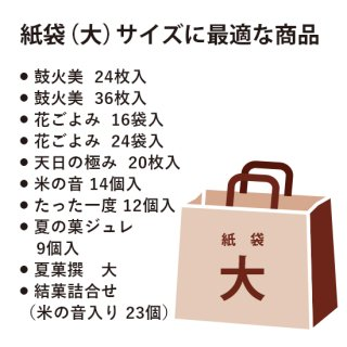 手提げ紙袋(大) (B-3)