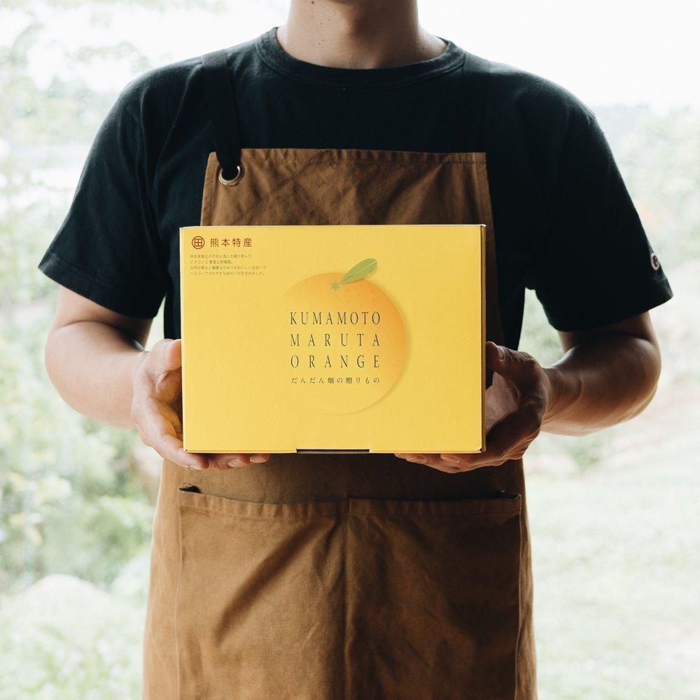 甘夏みかん缶詰 6缶セット