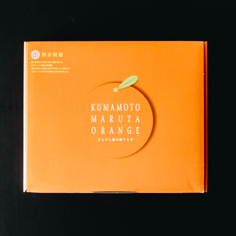 甘夏みかん缶詰 12缶セット