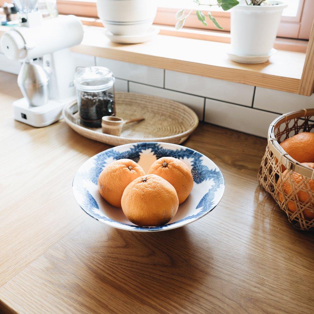 中村かおり たんぽぽ鉢 (2020年4月)