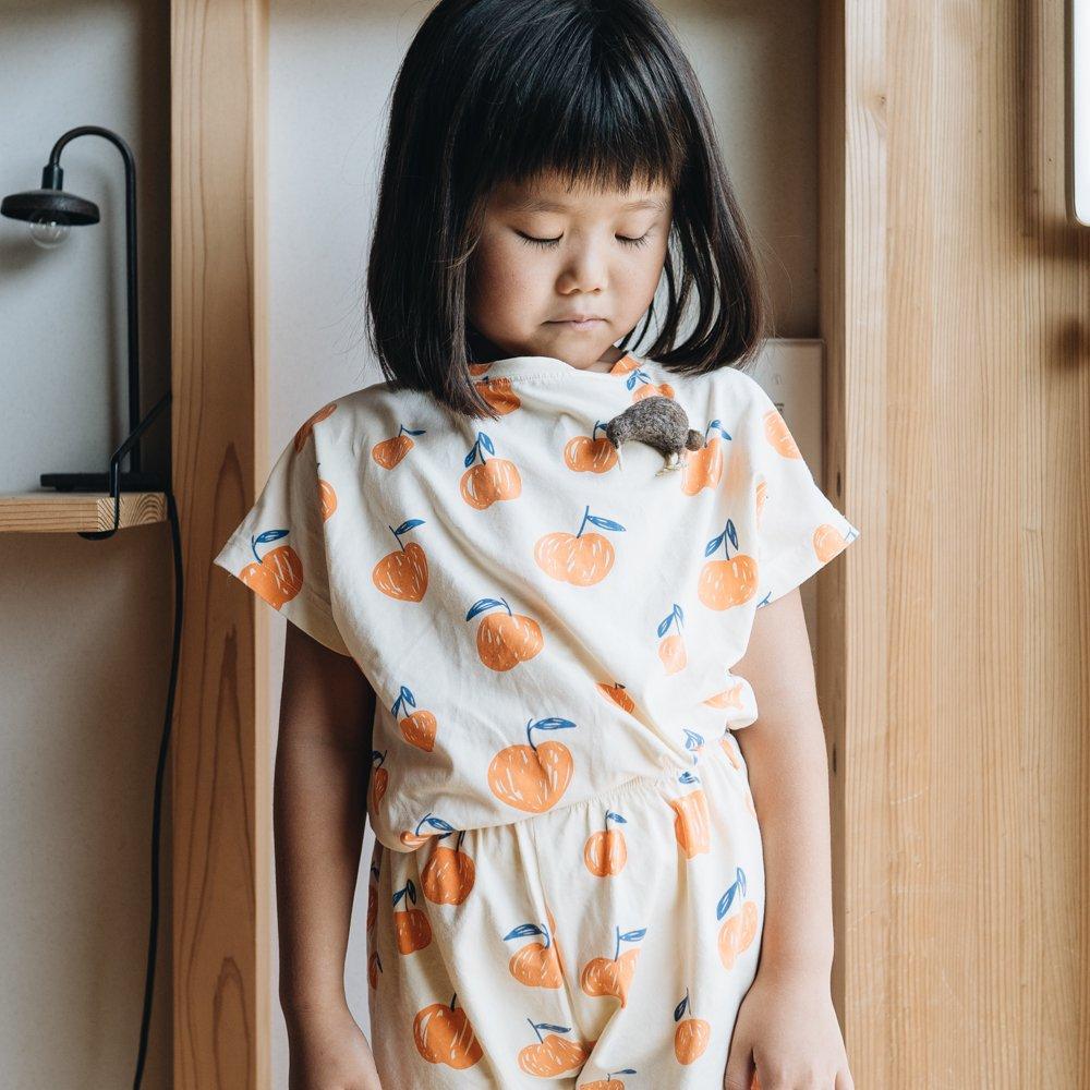 higuma キーウィブローチ (2020年11月)  H2