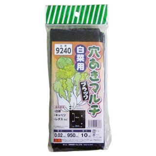 シンセイ 穴あきマルチ 白菜用 ブラック 9240