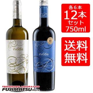 【送料無料】エヴォディア 750ml 赤6本、白6本(12本セット) ※一部地域送料別途必要 エボディア evodia 赤ワイン 白ワイン ホワイトワイン 辛口 スペイン