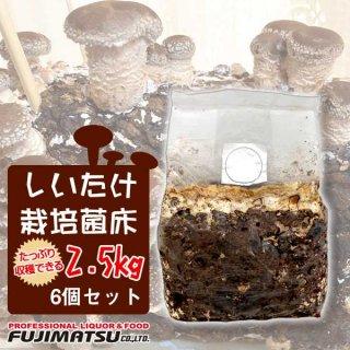 【メーカー直送品】【6個セット】しいたけ菌床ブロック2.5kg 栽培キット ブロック(生しいたけ シイタケ 椎茸 きのこ キノコ)