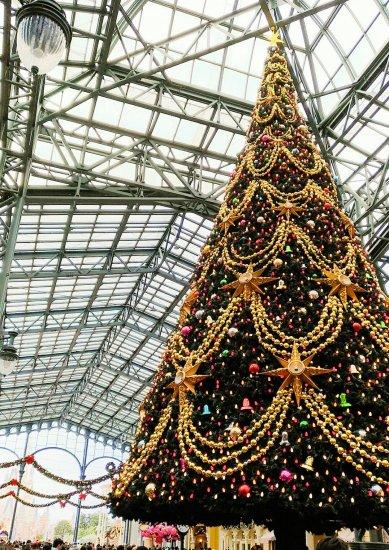 ディズニーランドのクリスマス