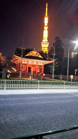 東京のイルミネーション【画像5】