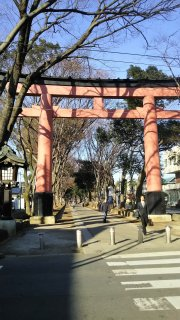 初詣にお勧めの神社 氷川神社