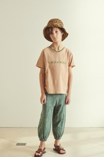 <img class='new_mark_img1' src='https://img.shop-pro.jp/img/new/icons14.gif' style='border:none;display:inline;margin:0px;padding:0px;width:auto;' />CARAMEL  SHARK T-SHIRT /  CAMEL  3y 4y 6y