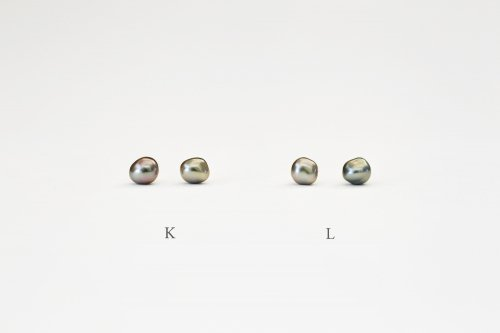 Tahiti pearl stud earrings