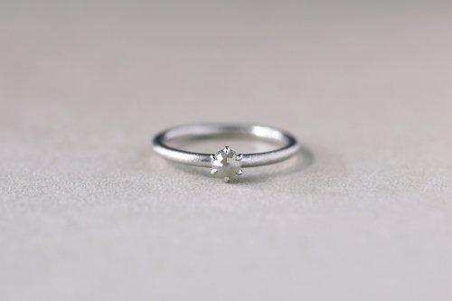 Norme ring + rosecut diamond ( white )  / Pt900