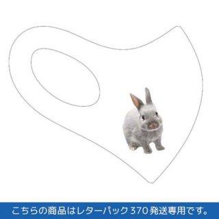 大きめサイズ・ふうた幼少期立体マスク2(白)レターパック370