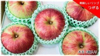 おいしいりんご 「つがる」 大玉 5個セット