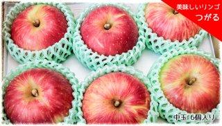 おいしいりんご 「つがる」 中玉 6個セット