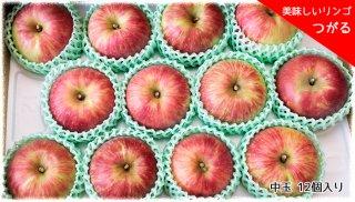 おいしいりんご 「つがる」 中玉 12個セット