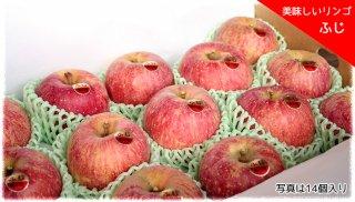美味しいりんご 「ふじ」 中玉 12個セット