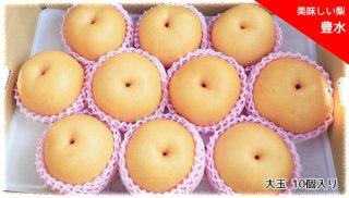 おいしい梨 「豊水」(ほうすい)大玉 10個セット