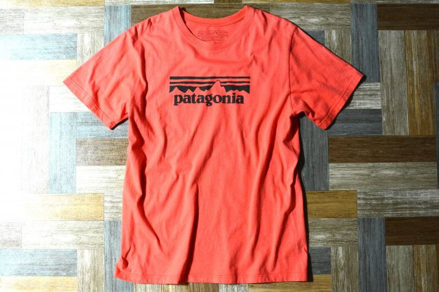 patagonia ロゴ Tシャツ ピンク系 (メンズ古着)