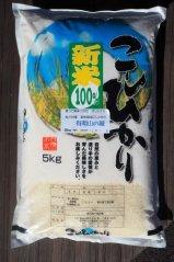 契約栽培米 有明山の風5kg(コシヒカリ)