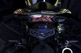 ヤマハ YZF-R15 LEON FEROCE フェンダーレスキット