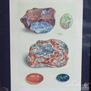 【 Andart 】鉱物の図版 / オパール・トルマリン