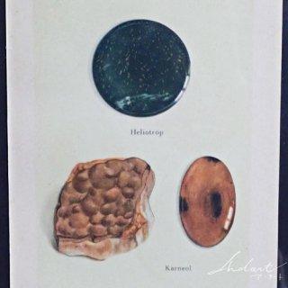 【 Andart 】鉱物の図版 / ヘリオトロープ・アゲートetc…