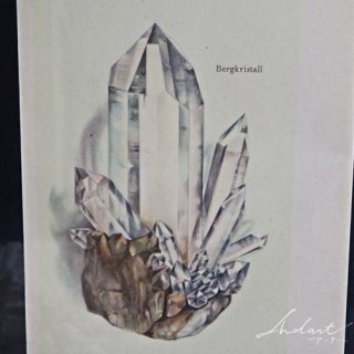 【 Andart 】鉱物の図版 / クリスタル・アメジスト