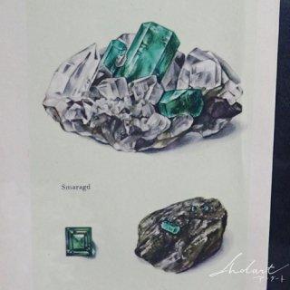 【 Andart 】鉱物の図版 / エメラルド・サファイア