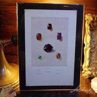 【 Andart 】 宝石の図版 /ガーネット