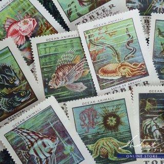 【 Andart 】Chocolate Card  / TOBLER / Ocean Animal / 1922