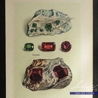 【 Andart 】 鉱物の図版-Granat, Turkis-柘榴石, トルコ石