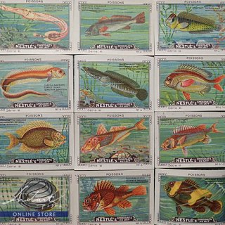 【 Andart 】Chocolate Card / NESTLE / POISSONS / 1920