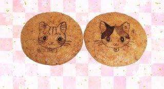 小腹を満たす救世主♪美味しく食べて猫助け!「さくらねこせんべい」