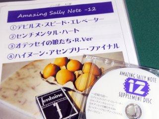 Amazing Sally Note(アメージング・サリーノート) Vol.12 by佐藤喜義(協力:清水邦隆)