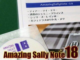 Amazing Sally Note(アメージング・サリーノート) Vol.18 by佐藤喜義(協力:清水邦隆)