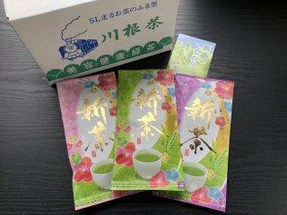 新茶の最盛期
