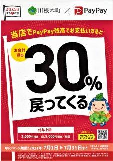 川根本町 ✖ ペイペイ 30%還元キャンペーン開催