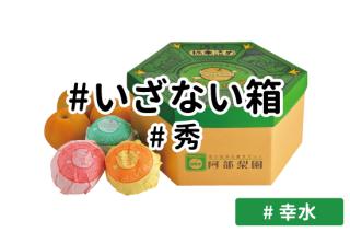 いざない箱【幸水】