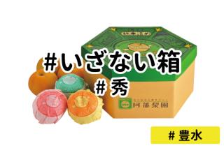 いざない箱【豊水】
