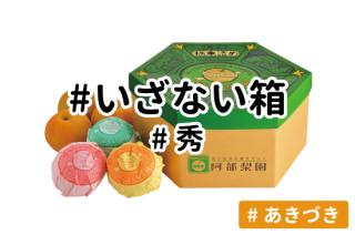 いざない箱【あきづき】