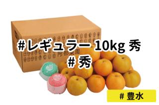 レギュラー秀10kg【豊水】