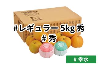 レギュラー秀5kg【幸水】
