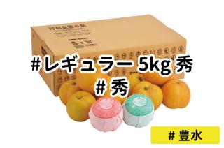 レギュラー秀5kg【豊水】