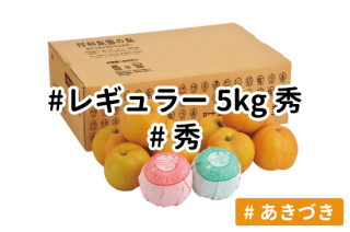 レギュラー秀5kg【あきづき】