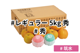 レギュラー秀5kg【筑水】