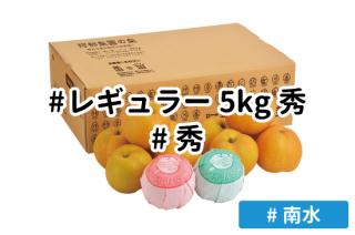 レギュラー秀5kg【南水】