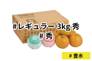レギュラー秀3kg【豊水】