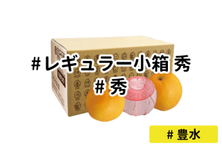 レギュラー秀 小箱【豊水】