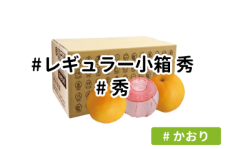 レギュラー秀 小箱【かおり】